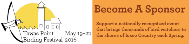 """Image shows the logo for the Tawas Point Birding Festival, which features a stylized Piping Plover flying toward a lighthouse silhouetted by the sun with the words """"Tawas Point Birding Festival, May 19-22 2016"""" next to text describing how to """"Become a Sponsor"""" on an orange background."""